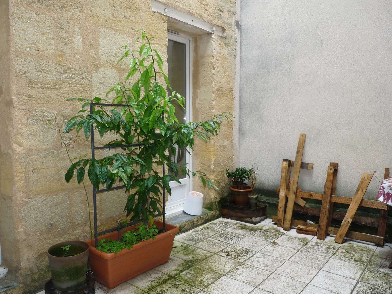 Appartement - Bordeaux